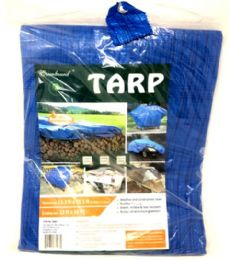 12x16 Blue Tarp 10 pack