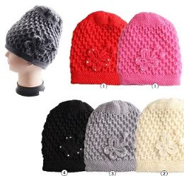 Woman's Solid Knitted Hat with Butterfly 24 pack