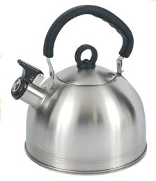 Home Basics 2.2 Liter Brushed Stainless Steel Tea Kettle With Riveted Easy Grip Handle, Silver